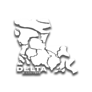Delta Discovery Tours
